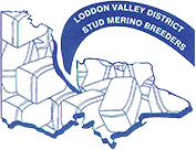 loddon valley stud merino